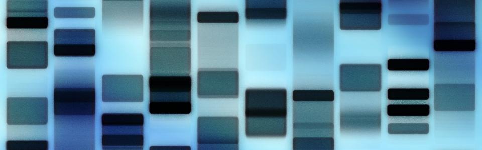 dna-fingerprint-1-1163530-1919×1356