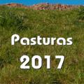 Pasturas 2017